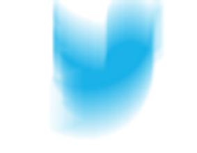 blur bird